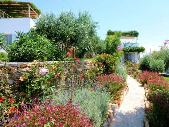 Kavos Boutique Hotel Naxos: Lovely Gardens