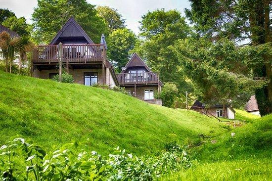Honicombe Manor Holiday Resort: Valley Lodges