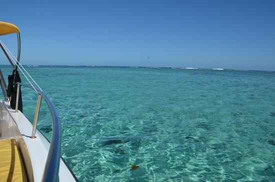 Beachcomber Paradis Hotel & Golf Club : Le lagon