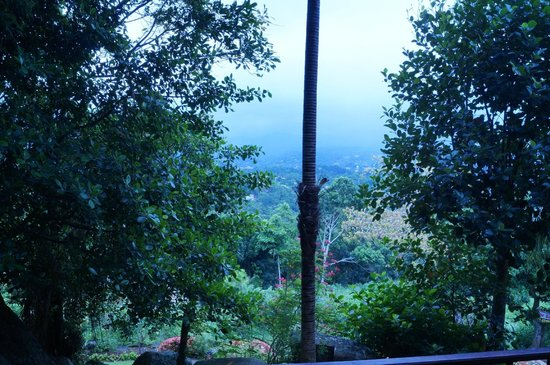 Amaya Hills: A view from the balcony