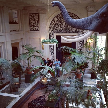 George Eastman Museum: George Eastman's parlour with taxidermied elephant ?!
