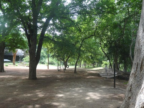 Galibore Nature Camp: Inside JLR