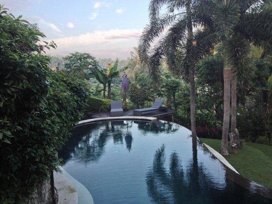 soulshine bali: Pool in the morning