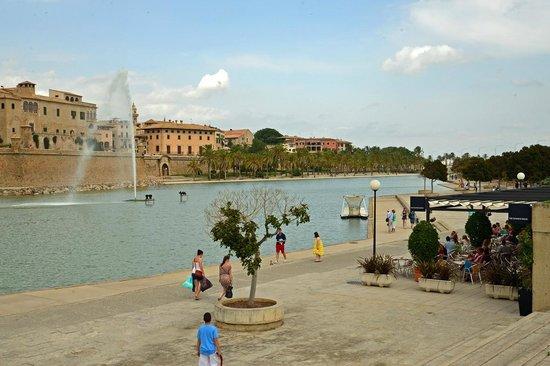 Palma Lock and Go - 1 Day Tours: au pied de la cathedrale...