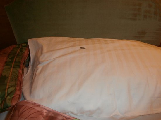 Angus Hotel: pillow surprise, not a chocolate, but.....