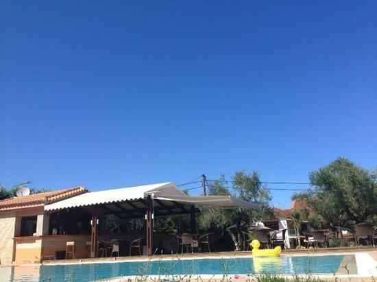 """Olive Grove Estate """"Eleas Gi"""": Spacious pool area."""