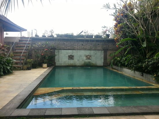 Permana Cottages: Der Pool