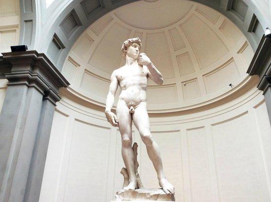 Galería de la Academia: Il meraviglioso David