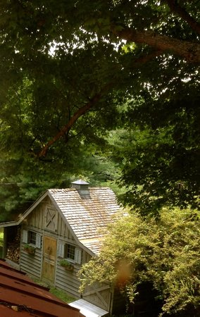 Olde Rhinebeck Inn : summertime green and the barn