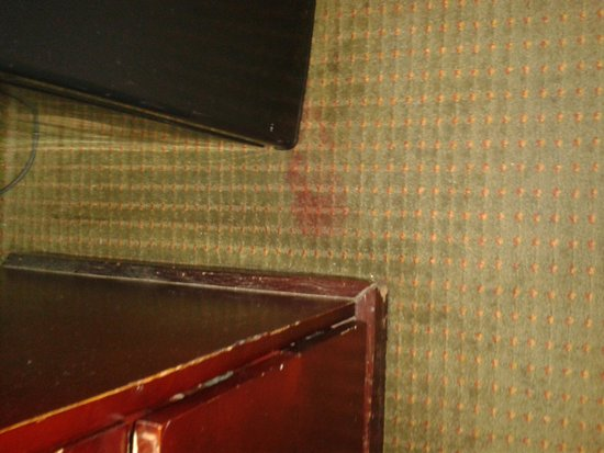 Clarion Hotel & Conference Center: dirty stained furniture