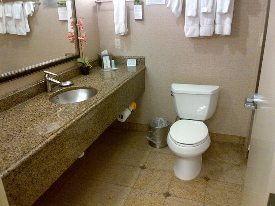 Comfort Suites Roswell: Large vanity