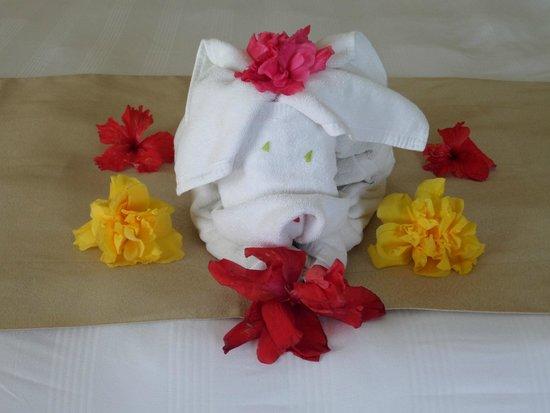 Panama Jack Resort: Towel Animals Every Day