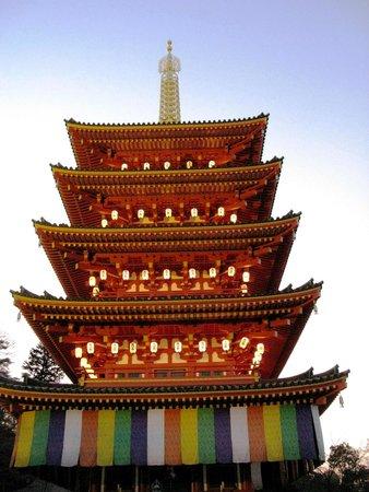 Kongoji Temple (Takahata Fudoson): Pagoda