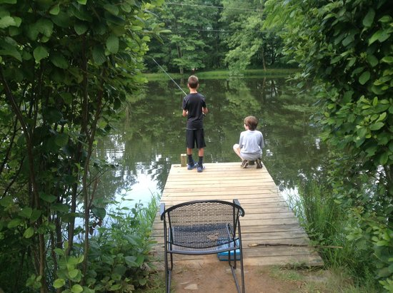 Pisgah View Ranch : the fishing pond