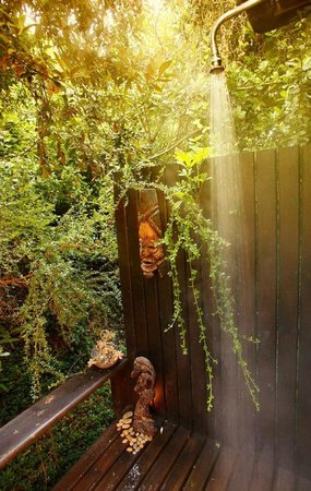 Moontide Guest House: Outdoor Shower Treetops