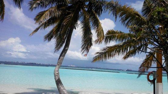 Kurumba Maldives: beauty of Kurumba beach
