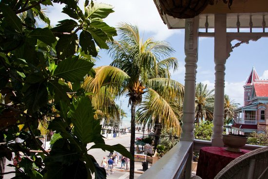 Southernmost Point Guest House : If your view includes palm trees, you know you're in the right place.