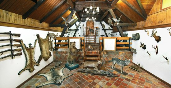 Hunting Collection and Dormouse Museum
