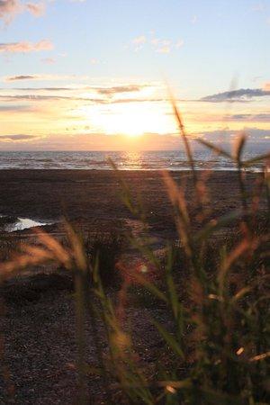 Woodland Hideaway: A Sunset @ Beach 5 a short walk away