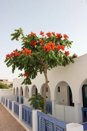 Les Omayades Hotel: 3