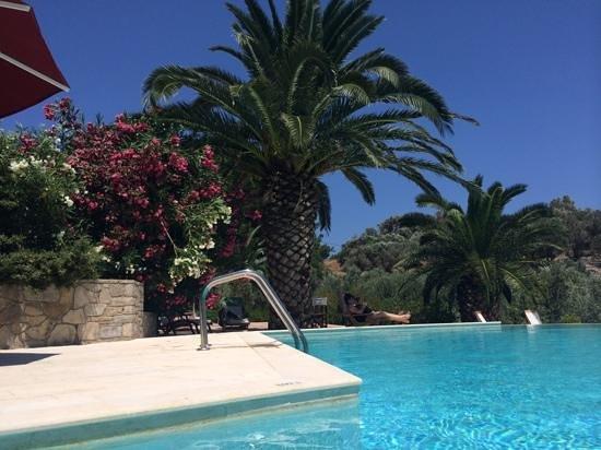 Armonia Bay Hotel: Het zwembad