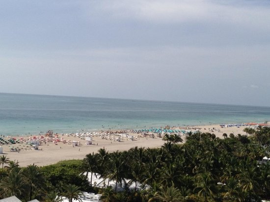 Shore Club South Beach Hotel: View from room 1166