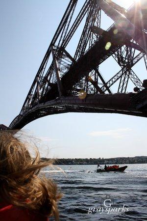 Forth Sea Safaris: Forth raill Bridge form underneath!