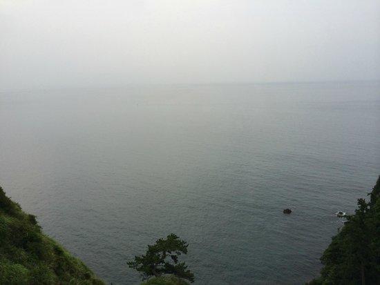 Yaizu Grand Hotel: 曇りオーシャンビュー