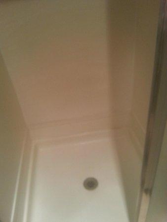 Travelodge at the Presidio San Francisco: doccia bianchissima che odorava di disinfettante.