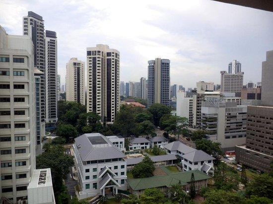 Hilton Singapore: view