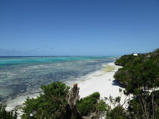 Ras Michamvi Beach Resort : Fantastisk syn over stranden