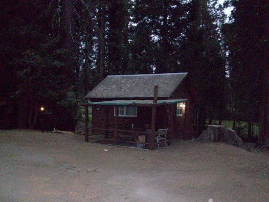 Grant Grove Cabins: Camp Cabin