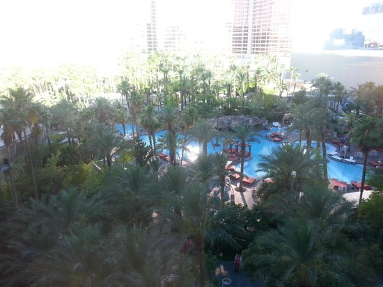 Hilton Grand Vacations at the Flamingo: Larger pool area view