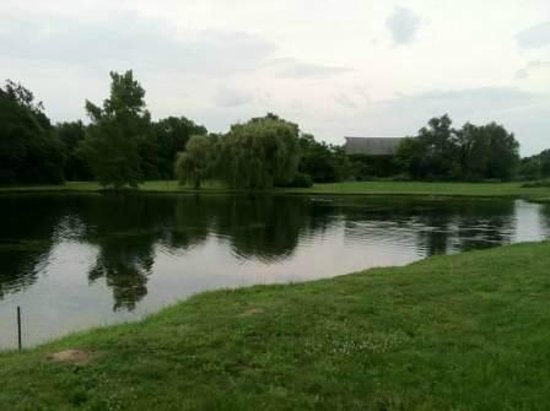 Decatur Conference Center and Hotel: Catch and Release Pond
