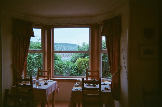Craigside Lodge Guesthouse: Viwe from Breakfast room (Craigside Lodge)