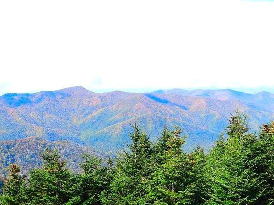 Mount Mitchell State Park: view from top