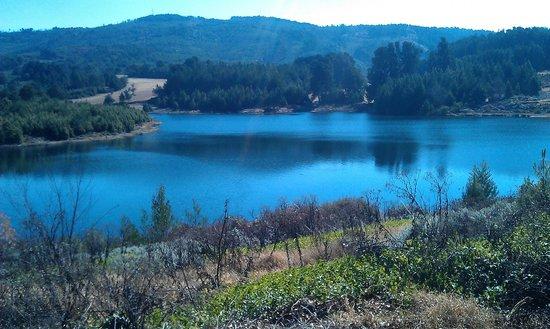 Troutbeck Resort : Lower dam
