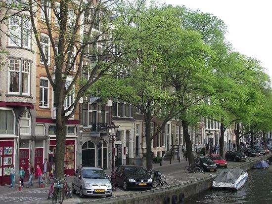 The Jordaan: Uma das ruas arborizadas do bairro.