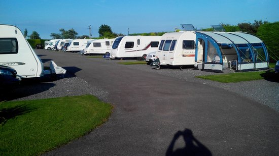 Cherry Tree Touring Park: View of row of caravans