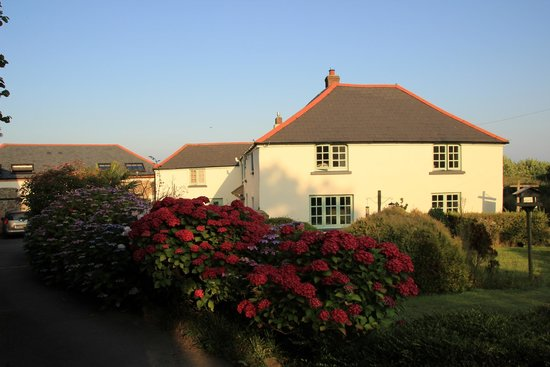 Higher Darracott Farm Bed & Breakfast: Front of the Farmhouse