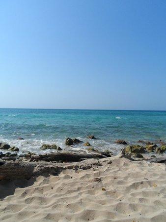 Tours en Islas del Rosario: playa!