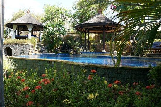 Jepun Bali Villa: Piscine