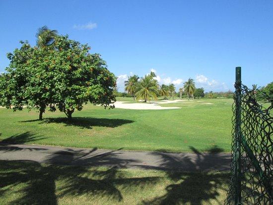 Melia Las Americas: Vista del campo de Golf
