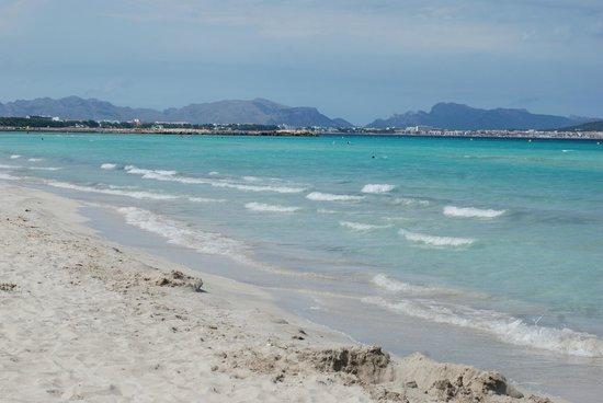 Zafiro Can Picafort: Playa de Muro, el caribe español