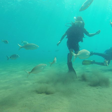 Atlantis Diving Lanzarote : sous l'eau