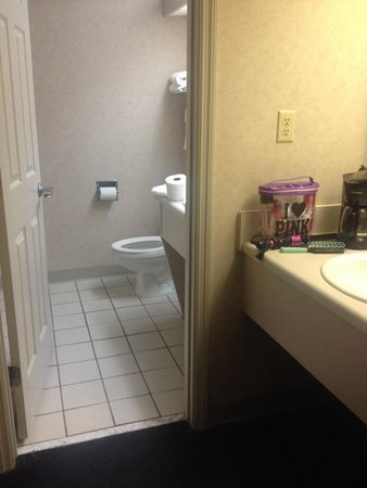 Twin Mountain Inn & Suites: The clean bathroom.