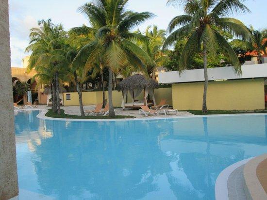 Melia Las Americas: Muy grande y rodeada de palmeras la piscina