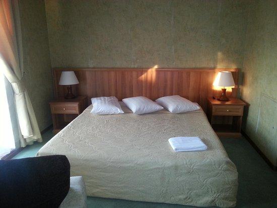 Atlanta Sheremetyevo Hotel: room