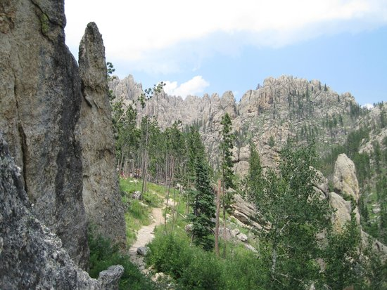 GeoFunTrek Tours: Needles Highway