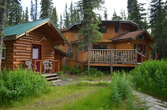 Denali Mountain Morning Hostel and Cabins: view of the grounds